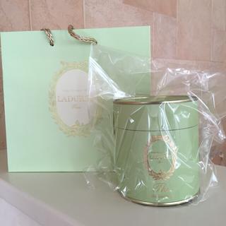 ラデュレ(LADUREE)の新品 LADUREE 紅茶 アールグレイ(茶)