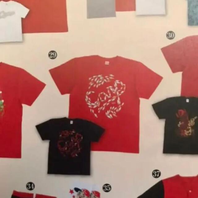 広島東洋カープ(ヒロシマトウヨウカープ)の【新品未使用】カープ鯉tシャツ スポーツ/アウトドアの野球(応援グッズ)の商品写真