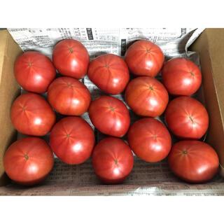 高知県 土佐香美フルーツトマト12個〜15個入り(野菜)