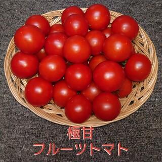 極甘フルーツトマト2キロ(野菜)