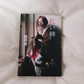 奥菜恵 紅い棘(女性タレント)