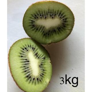 広島県産 無農薬 キウイフルーツ 小〜極小サイズ 3kg (フルーツ)