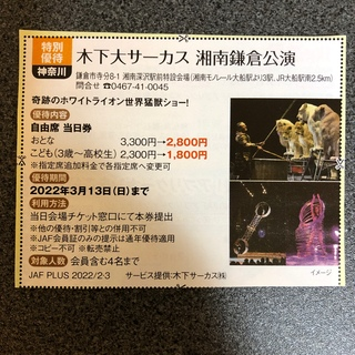 木下大サーカス 横浜公園 割引券(サーカス)