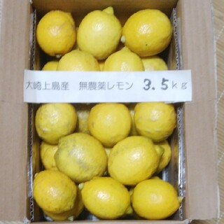 広島県大崎上島無農薬レモン 3.5kg(フルーツ)