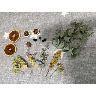 ドライフラワー花材とドライオレンジとドライレモン(ドライフラワー)