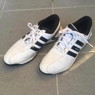adidas - adidas ゴルフシューズ26cm ケース付