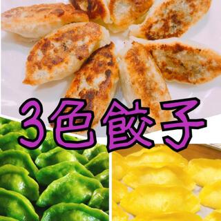 無添加3色餃子 白・緑・黄色 野菜の色無着色 皮もちもち綺麗美味しい(野菜)