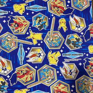 ポケモン - ポケットモンスター 生地 はぎれ ブルー