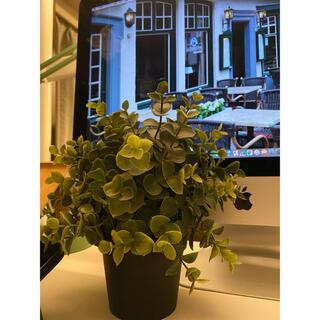 イケア(IKEA)の人工観葉植物 IKEA(インテリア雑貨)