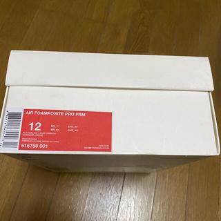NIKE - ナイキ エアフォームポジット 30cm イージー