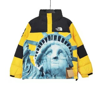 THE NORTH FACE - サイズ: M   supreme the north face バルトロ