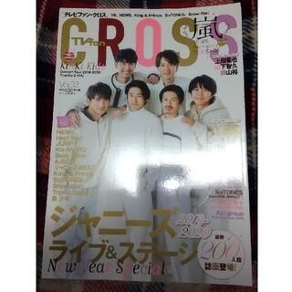 TV fan CROSS Vol.33(アート/エンタメ/ホビー)