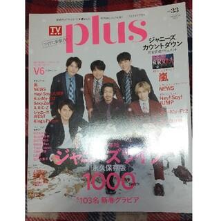 TVガイド plus Vol.33(アート/エンタメ/ホビー)
