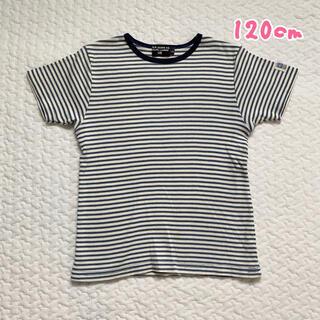 ポロラルフローレン(POLO RALPH LAUREN)の120★ボーダーTシャツ(Tシャツ/カットソー)