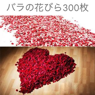バラ 花びら 300(キッズ/ファミリー)