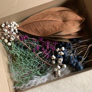 箱いっぱいの自然素材(ドライフラワー)