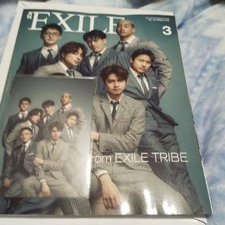 エグザイル トライブ(EXILE TRIBE)の月刊EXILE 3月号     ポストカード(アート/エンタメ/ホビー)