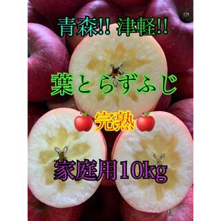 りんご 送料無料!! 家庭用 葉とらずふじ 10kg前後 農園直送!!