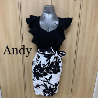 Andy - ANDYワンピース