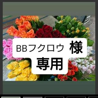 BBフクロウ様専用 26発 B品 90本(その他)