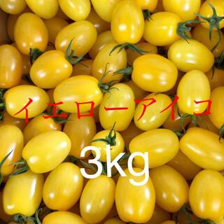 イエローアイコ たっぷり3kg(野菜)