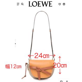 LOEWE - 再出品 美品 LOEWE ロエベショルダーバッグ