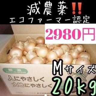 a62 北海道産 減農薬 玉ねぎ Mサイズ 20キロ(野菜)