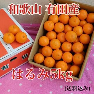 和歌山 有田産 はるみ 5kg (送料込み)