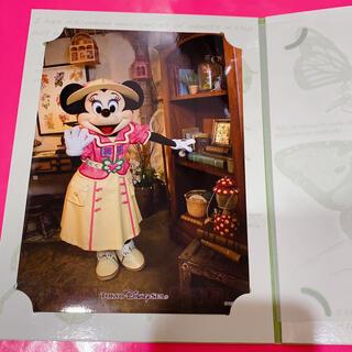 Disney - ディズニー ミニー グリーティング 写真