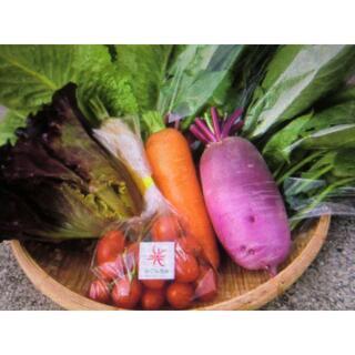 季節の野菜♡詰めつめセット♬(野菜)