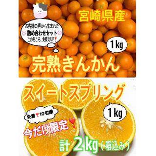 【現品限り!!】スイートスプリング・きんかん 計2㎏(送料込み)/果物 みかん