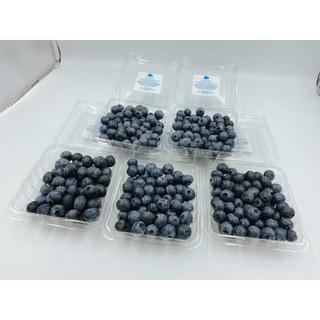 生ブルーベリー 5パック 1パック約100g(フルーツ)