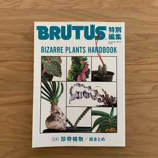 マガジンハウス(マガジンハウス)の合本珍奇植物 BIZARRE PLANTS HANDBOOK(住まい/暮らし/子育て)
