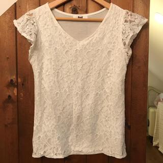 Avail - 今月末まで出品‼️白 レース Tシャツ