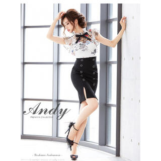 Andy - Andy