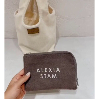 ALEXIA STAM - 未使用 アリシアスタンポーチ 希少