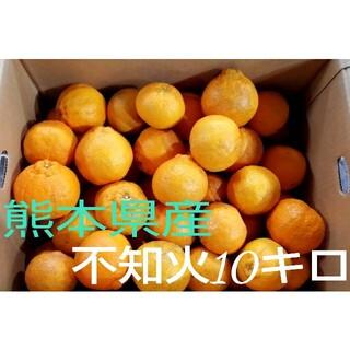 熊本県産不知火10kg箱込み(フルーツ)