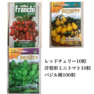 レッドチェリー種、洋ナシ型トマト種、バジル種(その他)