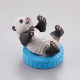 カイヨウドウ(海洋堂)のパンダ好きの方へ♡子パンダ日和2 すくすく成長記 わくわくセット ガチャガチャ(キャラクターグッズ)