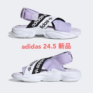 adidas - adidasフットウェア(シューズ、サンダル)