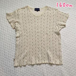ラルフローレン(Ralph Lauren)の160cm★小花柄Tシャツ(カットソー(半袖/袖なし))
