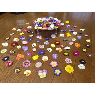 銀の紫陽花が作った彩りビオラとふんわりプリムラのドライフラワー山盛り70冠です(ドライフラワー)