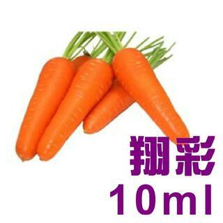 残220ml:人参の種 フジイシード「翔彩」約10ml(約250粒)(野菜)