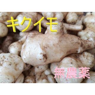 大分県産 菊芋(キクイモ)5kg 特売品(野菜)