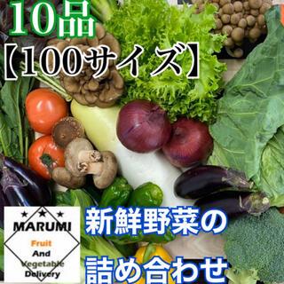 10品 野菜詰め合わせ&奥久慈卵 野菜セット 八百屋さんおまかせ(野菜)