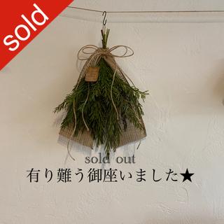 ミモザのgreen swag☘ ミモザ スワッグ(ドライフラワー)