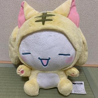 シナモロール - シナモンロール ぬいぐるみ Sanrio