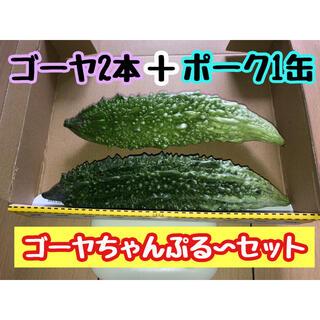 ゴーヤ2本+ポーク1缶  ゴーヤチャンプルーセット(野菜)