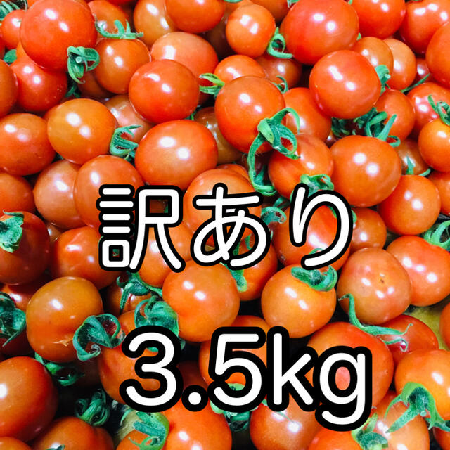ミニトマト訳あり 3.5kg 食品/飲料/酒の食品(野菜)の商品写真