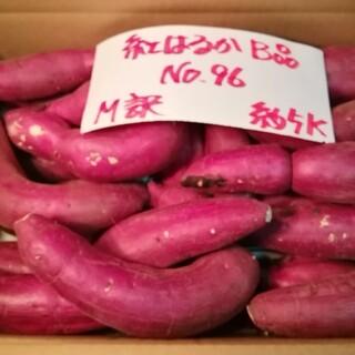 超お得!! 訳あり☆限定品☆ねっとり甘い貯蔵品紅はるかB品約5Kです。(野菜)